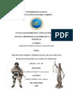 Proteccion Juridica Internacinal de Los Derechos Humanos Durante Los Conflictos Armados