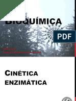 Clase 04 Enzimas - Cinética