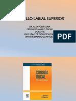 Cirugia Bucal II. Octava Clase. Frenillos