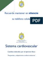 Sistema Cardiovascular (Fisiología del Ejercicio)