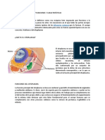 trabajo de microbiologia 2018.docx
