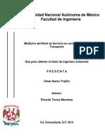 Tesina Nivel de Servicio.pdf