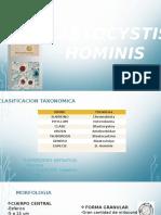 BLASTOCYSTIS HOMINIS.pptx