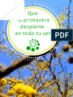 SemillaSalvaje Catálogo #1.pdf