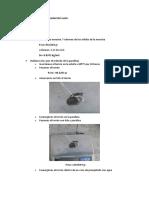 Estimación de porosidad de suelo