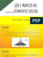 Avaliação e Manejo do comportamento suicida.pdf