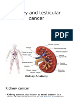 Kidney and Testicular Cancer