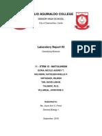 Laboratory Report 3