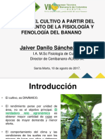 fisiologia y fenologia del banano