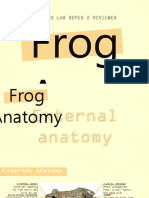 Bio Depex 2 Frog Anatomy