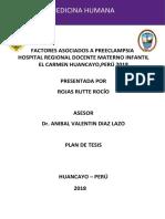 Plan de Tesis 2 - Rojas Rocío