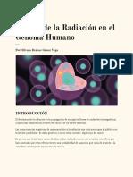 Efectos de La Radiación en El Genoma Humano