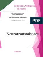 Neurotransmisores, Ontogenia y Filogenia