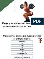 Carga y Su Aplicacion en El Ejercicio.