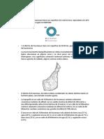 ambientalk y riesgos.docx