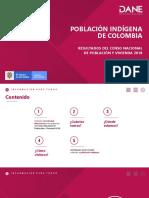 DANE Presentacion Grupos Etnicos 2019