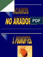 Acaros No Aradores