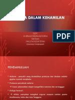 10258_Slide Malaria Dlm Kehamilan