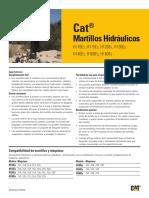 C10385921.pdf