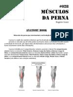 028 Musculos Da Perna