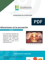 ALTERACIÓN DE LA PERCEPCIÓN