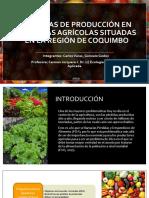 Ppt Horticultura Final