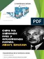 Cátedra No 6 - Membrana celular y su fisiología (1).pdf