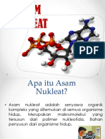 PPT_ASAM_NUKLEAT