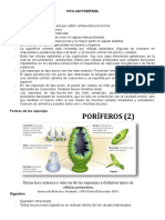 Biologia Animal Apunte.docx_1