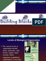 levelsofbiologicalorganization-160210223046