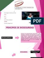 principios de bioseguridad.pdf