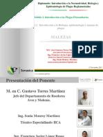diplomado-malezas-131110233203-phpapp02.pdf