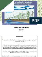 Capitulo 2, Muestreo y Monitoreo Sanidad Vegetal 2019