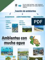Clasificación de Ambientes