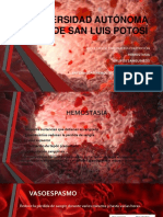 Anatomia Grupos Sanguineos