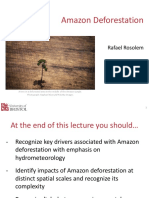 Amazon Deforestation Lecture Rosolem