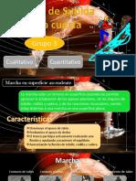 BIOMECÁNICA - ANÁLISIS CUALITATIVO Y CUANTITATIVO