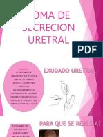 Toma de Secrecion Uretral Cervical Gram