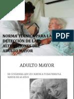 Normativa Adulto Mayor