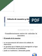 Calculo de Muestra 2019-2
