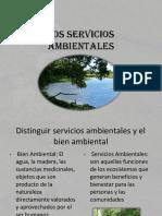 losserviciosambientales-131121173412-phpapp02