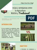 Semejanzas y Diferencias de La Agricultura Moderna y Tradicional PPT