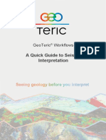 5 GeoTeric Workflows QuickGuide