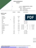 infome_resultados.pdf