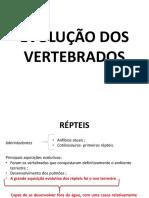Evolução Dos Vertebrados 05-10-2019 Pré-Vestibular