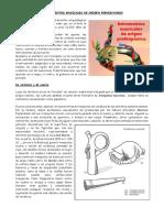Instrumentos Musicales Peruano de Origen Prehispanico