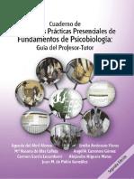 Objetivos y Planificación AAPP 2019