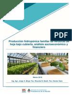Analisis financiero de producción hidroponica