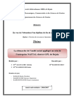 La Démarche de l'Audit Social Appliqué Au Sein de l'Entreprise NAFTAL District GPL de Bejaia