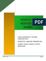 informe bambu 20